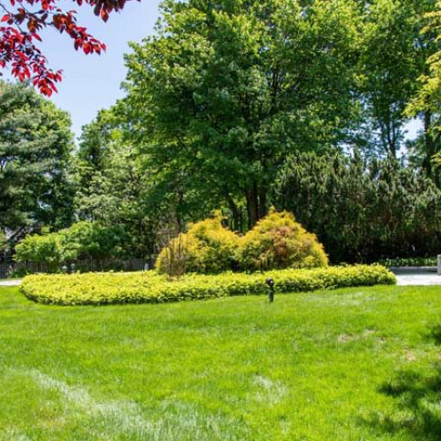 landscaping services port chester ny